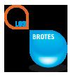 Los Brotes | Licores, cremas, orujos, vodkas, ginebras y mucho más.